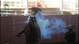 Puerto Vallarta Celebrates Its 100th Anniversary with the 7th International Charro Championship
