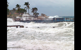 Same Caribbean, Different Disaster: Climate Change and COVID-19