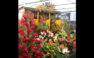 Grenada Wins 14th GOLD MEDAL at RHS Chelsea Flower Show in the UK