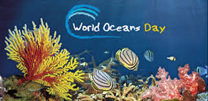 World Oceans Day 2018 - Review