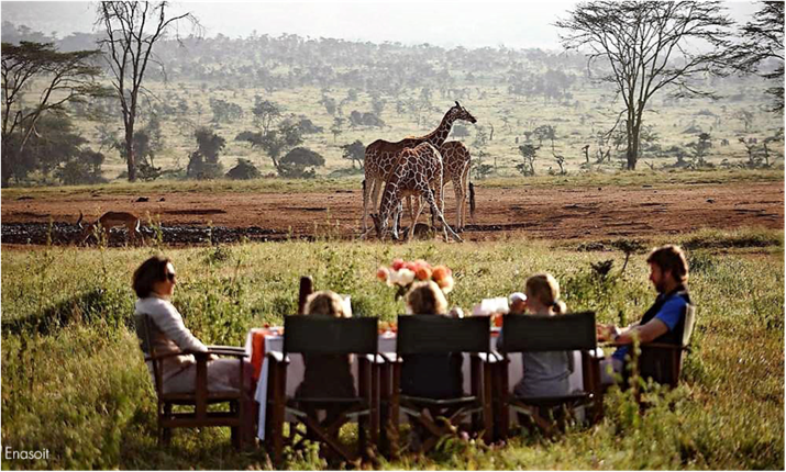 Should You go With Your Family or Your Partner on a Tanzania safari?